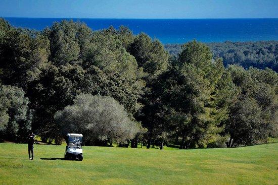 Terraza Del Restaurante Picture Of Golf Costa Daurada El