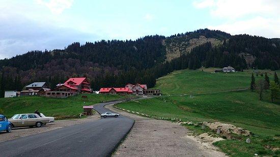 Cheia, Rumänien: DSC_0538_large.jpg
