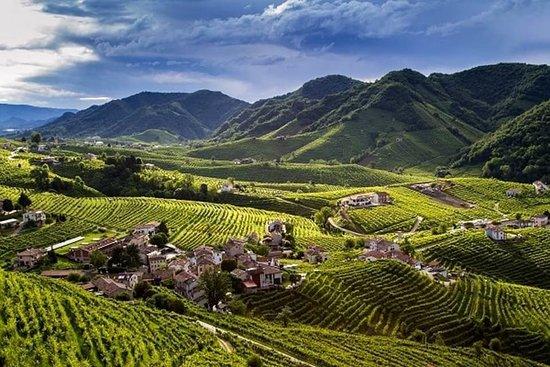 Pieve di Soligo, Италия: Cartizze Area