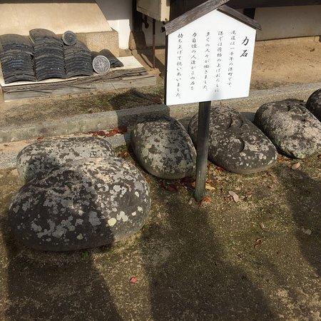 Saikokuji Temple: photo3.jpg