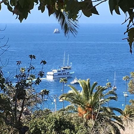 Two Harbors, CA: photo3.jpg