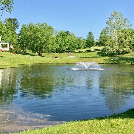 Picture of hilton garden inn charlottesville charlottesville tripadvisor for Hilton garden inn charlottesville