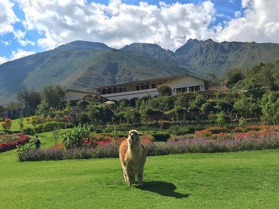 Peru Best Holidays