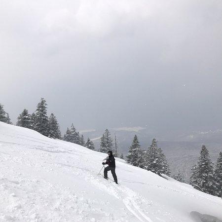 Hakkoda Ski Area