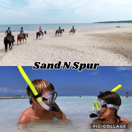 ‪Sand N Spur Snorkeling & Horseback Riding on the Beach‬