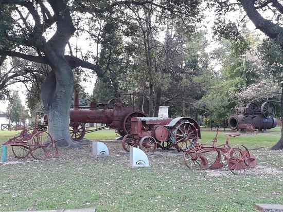 Esperanza, الأرجنتين: Museo de maquinaria agrícola antigua