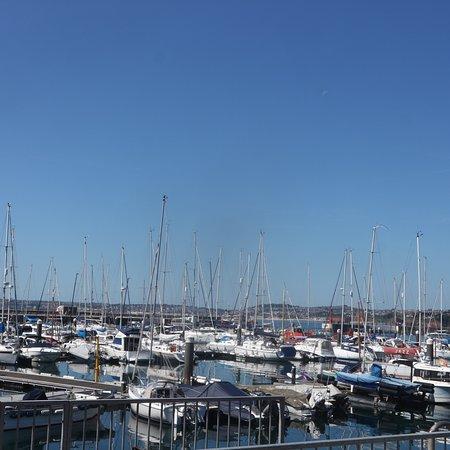 Inner Harbour: photo1.jpg