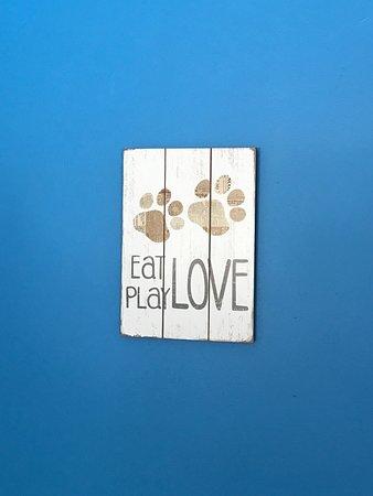 Londonderry, VT: Pet friendly room
