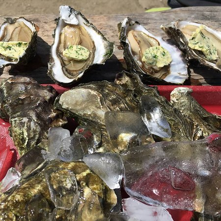 Marshall, Kalifornien: some for eating raw, some for the grill