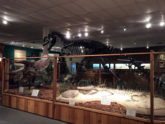 Clute, TX: Museum of Natural Science at the Center for the Arts & Sciences