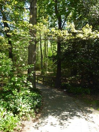 Newport News, VA: Trail