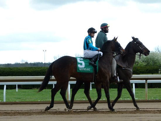 Keeneland: getting ready to head to the starting gate