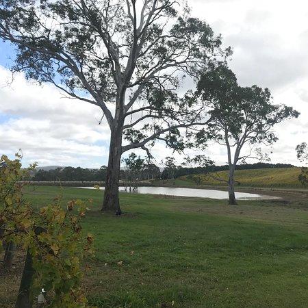 Balhannah, Australien: photo0.jpg