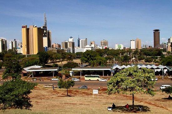 Excursión de todo el día a Nairobi...