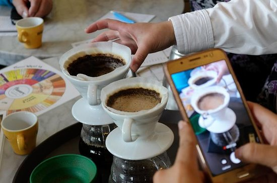 Specialty Coffee Shops Tour in Bogota