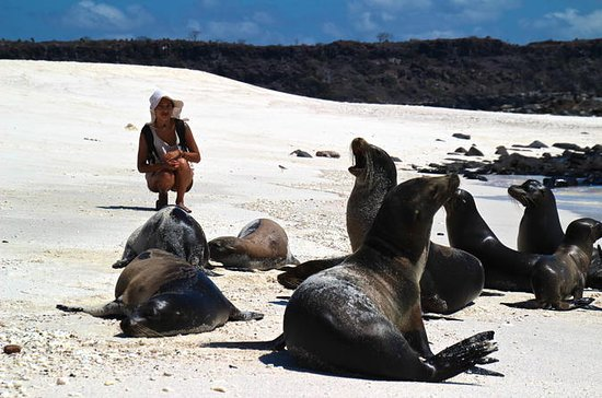 Galapagos Islands Land-Based Eco...