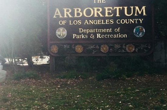 Los Angeles Arboretum City Tour