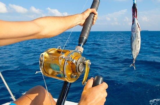 Camaçari Private Deep Sea Fishing Tour