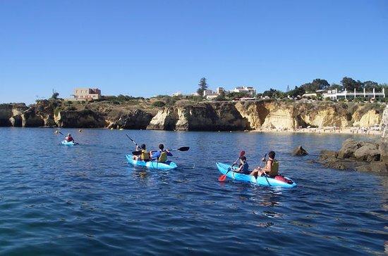 Kayak Cave & Snorkel Trip