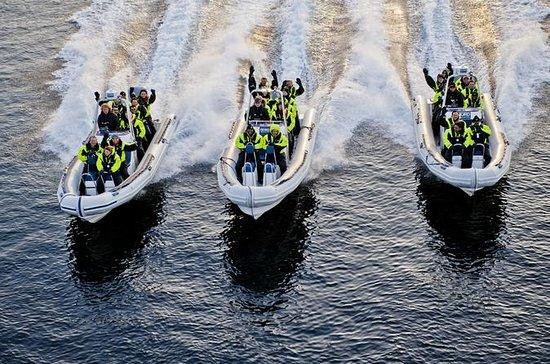 Lysefjord Safari Classic an...