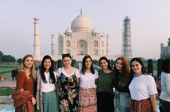 Privat en dag liten gruppe Taj Mahal...