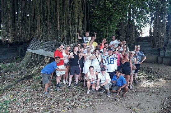 Compact Classic Bali Eco Educational...
