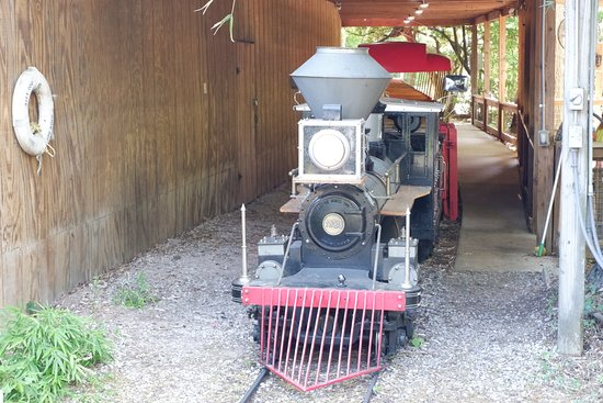 Alexandria Zoological Park: You can ride the train! $2 extra!