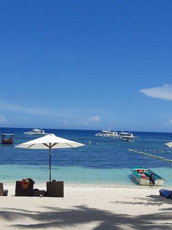 Oasis Resort: 20180512_130201_large.jpg