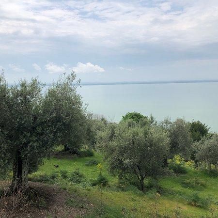 Изола-Маджоре, Италия: Isola Maggiore