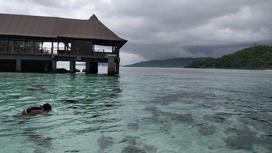 Amitie, Seychelles: Snorkeling