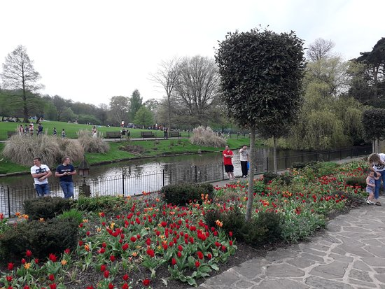 The flower garden 9 - Picture of Golders Hill Park, London