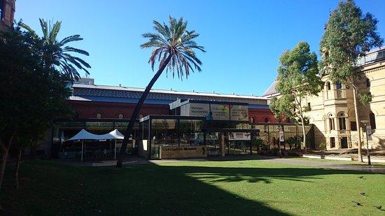 พิพิธภัณฑ์ออสเตรเลียใต้