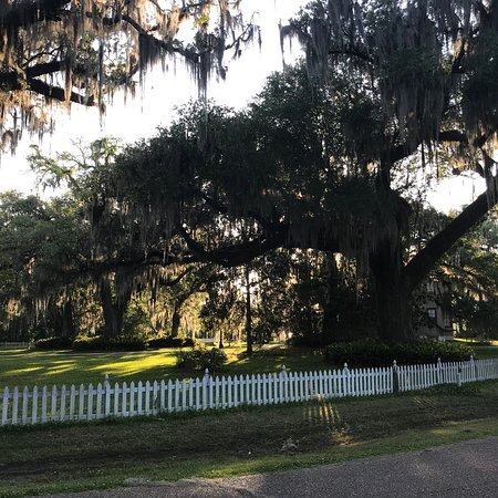 photo0 jpg - Picture of Fairview-Riverside State Park, Madisonville