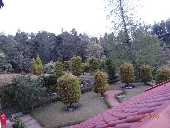 Chaukori, อินเดีย: The Ground