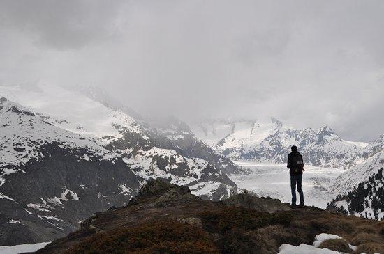 Aletsch Glacier: Vue depuis Hohfluh
