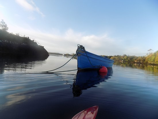 Glengarriff, Irlandia: Early Morning Dawn/Sunrise Kayaking!