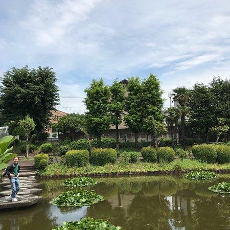 Higashimatsuyama, اليابان: photo3.jpg