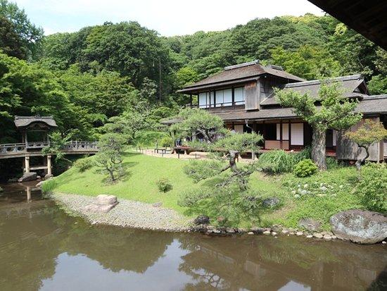 Sankeien Gardens: 臨春閣 春の特別公開