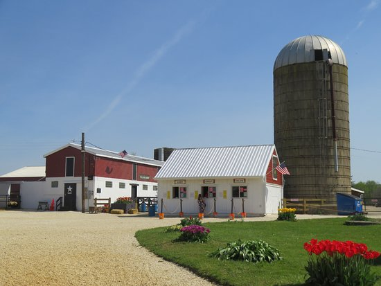 Holland Ridge Farm