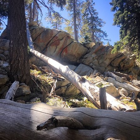 Idyllwild, Californien: Mount San Jacinto State Park and Wilderness