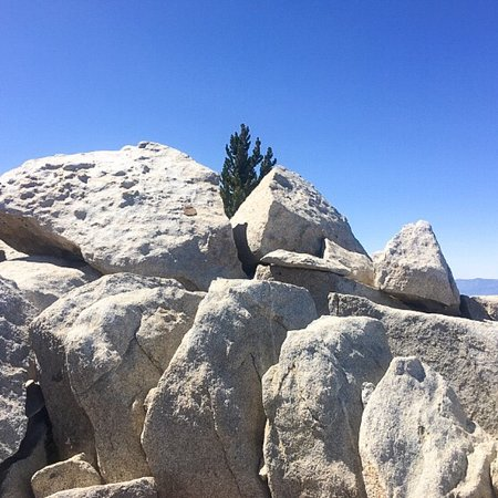 Idyllwild, CA: Mount San Jacinto State Park and Wilderness