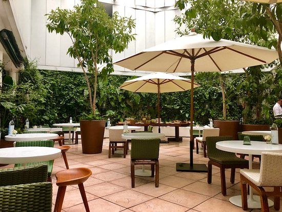 Condesa DF: Outdoor courtyard dining. Enjoy breakfast here or in the adjacent lounge.