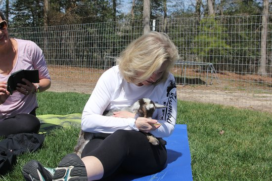 Harbeson, DE: Nothing like a few snuggles to relax you! The baby goats love it too!