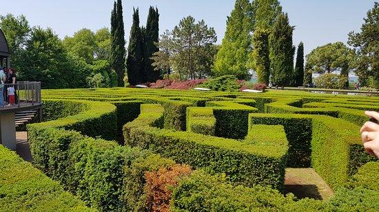 Labirinto picture of parco giardino sigurta valeggio for Giardino labirinto