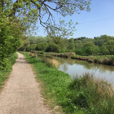 Wilts & Berks Canal: photo3.jpg