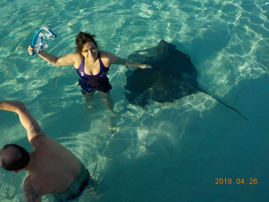 East End, Grand Cayman: Wife's new Pet...lol