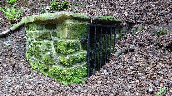 Pittencrieff Park: Wallace's Well
