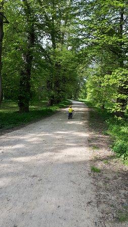 Veltrusy, جمهورية التشيك: cesta alejí