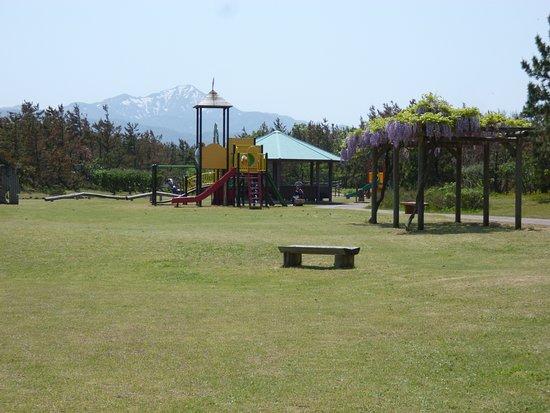 Kaigan Park