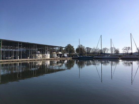 Hardin, KY: Some of the house boats and sailboats docked at the marina.